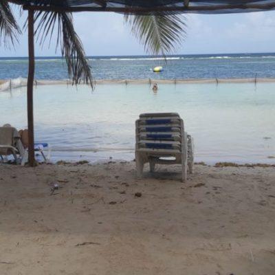 Prestadores de servicios turísticos de Mahahual colocan sus propias redes para evitar que el sargazo llegue a los arenales