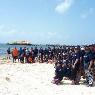 La iniciativa privada se une a la recoja de sargazo en Playa del Carmen; alrededor de 200 voluntarios participaron este fin de semana en la jornada de limpieza