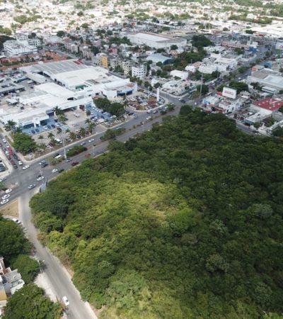 """Concluye Implan el martes análisis de consultas ciudadanas del PDU; """"no es lo ideal seguir devastando la selva para crecer horizontalmente"""", dice Carlos Díaz Carvajal"""