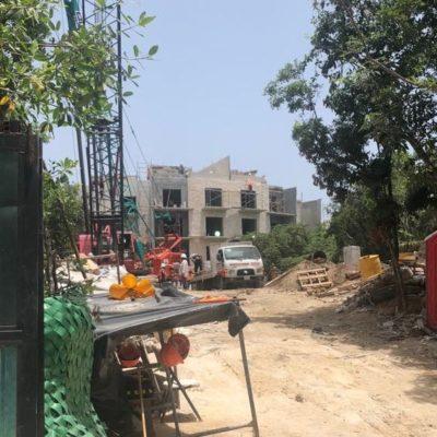 Reportan corte de manglar en The Fives, cuyos propietarios son vinculados con el Ayuntamiento de Solidaridad
