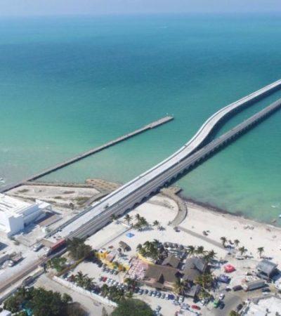 Sargazo recala en playas de Yucatán y alerta a prestadores de servicios turísticos; Progreso y San Crisanto son los puertos más afectados