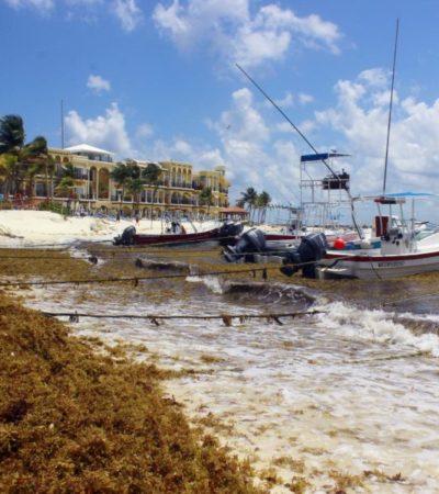 """""""Es tiempo de revivir el proyecto de la construcción de un centro que permita monitorear los litorales, cuyos recursos se perdieron en 2010"""", dice Víctor Alcérreca, director del Coqcyt"""