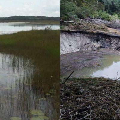 SOCAVÓN SECA LAGUNA EN NICOLÁS BRAVO: Alarma en el sur de QR por el impacto ambiental del fenómeno; miles de litros se drenaron en pocos minutos