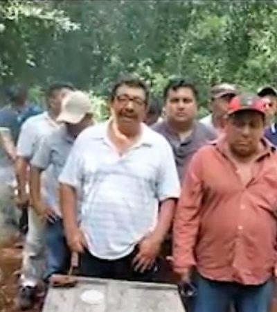 Apicultores mayas advierten que defenderán su territorio
