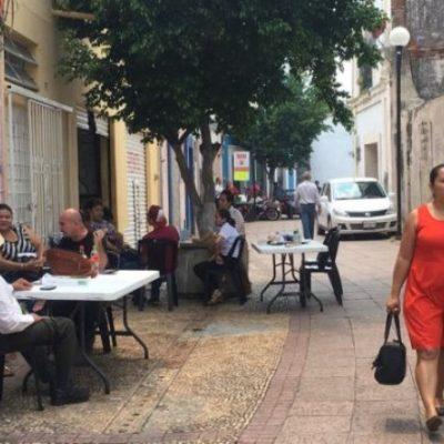 NO SON TURISTA SINO BURÓCRATAS: Esperan en una mesa, bajo un árbol y en la calle a que sus oficinas sean recuperadas de un siniestro
