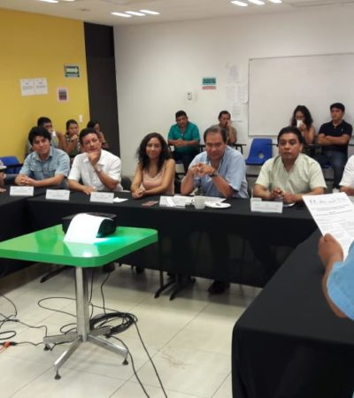Presentan proyecto de abejas meliponas en José María Morelos