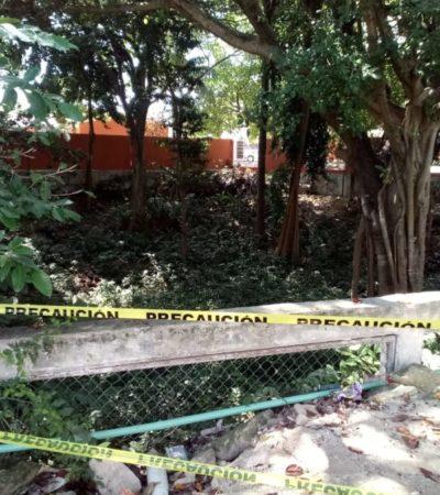 Cenote queda al descubierto en la construcción de un domo en la primaria 'María Montessori' en Playa del Carmen