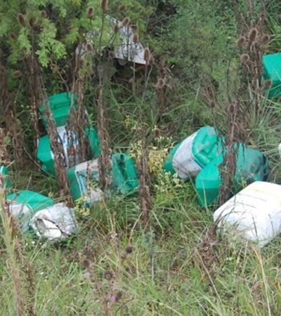 Advierten en Yucatán presencia de contaminantes en agua y campo; personas expuestas a enfermedades por uso inadecuado
