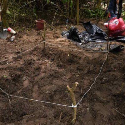Adquiere Veracruz contenedores frigoríficos para almacenar cuerpos hasta identificarlos