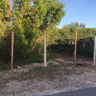 Cierran particulares zona de manglar en Puerto Morelos