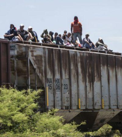 Recorrerán CNDH y ACNUR ruta de migrantes centroamericanos para mejorar su protección
