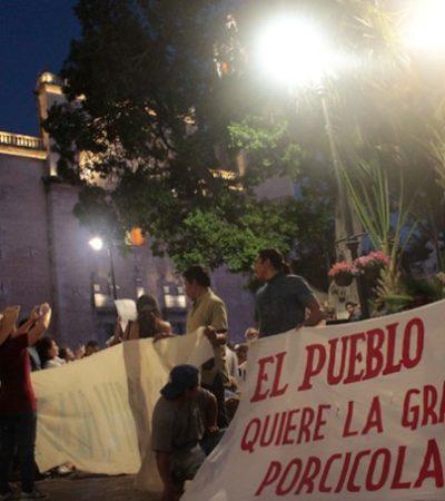 Piden intervención de AMLO por apertura irregular de 'mega granja' porcícola en Homún; acusan a gobierno yucateco de favorecer a empresarios