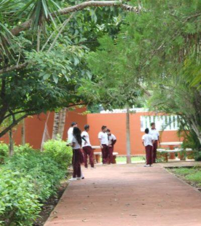 Cableado defectuoso deja sin luz a escuela en Kantunilkín