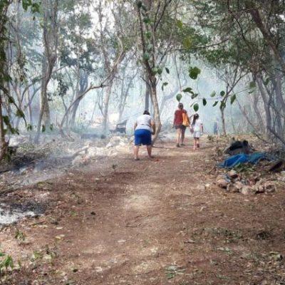 Asegura Laura Beristain que ya trabajan en el plan de reubicación de alrededor de 500 familias que viven en zonas irregulares en Playa del Carmen, y en el que el gobierno federal de AMLO invertirá 10 mil mdp