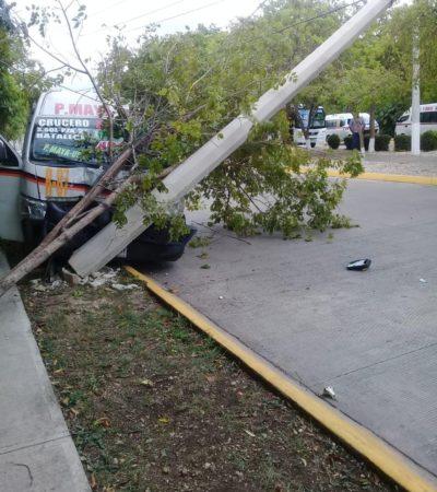 CAFRES AL VOLANTE: Combi del transporte público choca y derriba un árbol y un poste en la Región 107 de Cancún; dos heridos