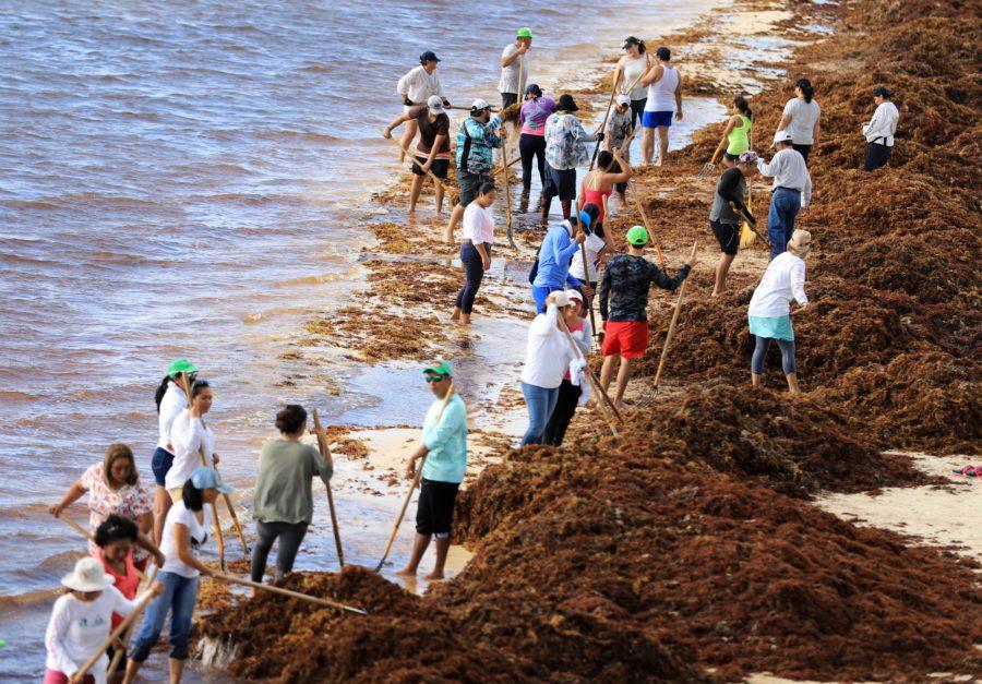 """""""NO HAY AUMENTO DE IMPUESTOS"""": Laura Fernández pide comprensión a los hoteleros en la propuesta de implementar un derecho a los turistas que se usará para garantizar la limpieza permanente de playas"""