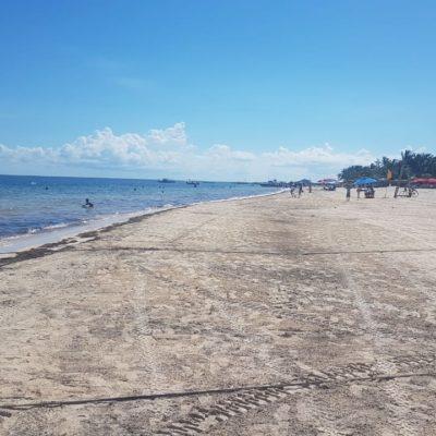 PLAYAS SIN SARGAZO: Recuperan arenales de Puerto Morelos su máximo esplendor