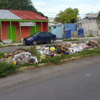 Cañeros se solidarizan y prestan sus camiones para realizar recoja de basura en Chetumal
