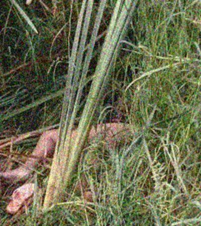 Hallan cadáver de mujer entre la maleza en predio de El Carmen, Campeche; ex pareja es sospechoso