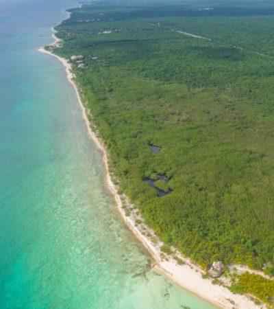 Conacyt realiza un estudio en Cozumel para determinar el valor económico de sus ecosistemas entre los que se encuentran manglares, selvas y arrecifes