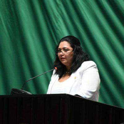 """""""Se abre el abanico para elegir al Fiscal del estado y que ninguna persona local corra el riesgo o sus familias"""", defiende la diputada Yamina Rosado"""