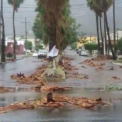 VIDEO | 'Sergio' impacta en Sonora; deja daños e inundaciones en Guaymas