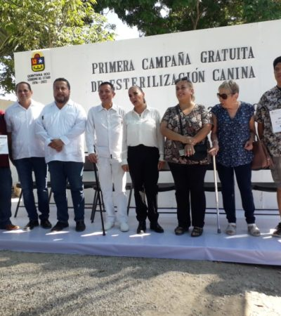 ASUME MARA LUCHA FRONTAL… CONTRA FAUNA CALLEJERA: Externa Alcaldesa preocupación por proliferación de perritos y gatitos en Cancún