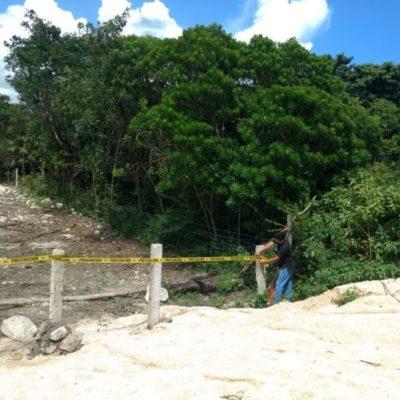 Interpone INAH una denuncia ante la PGR por destrucción de vestigios en Punta Chile, al sur de Playa del Carmen