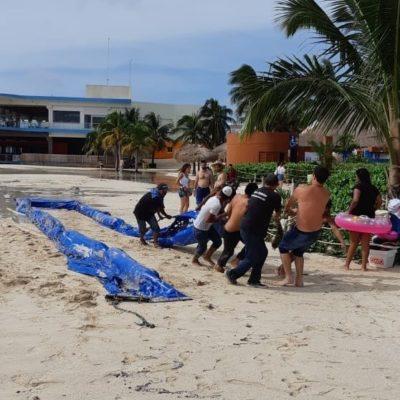 De 13 mdp que el Ayuntamiento pagaría a Dakatso, la empresa sólo ha recibido la mitad por el servicio de contención de sargazo en Playa del Carmen