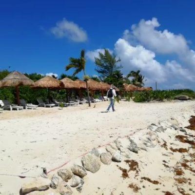 Zofemat realiza inspección en Punta Esmeralda, por privatización de playa pública