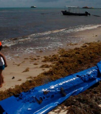 Lamentan empresarias la amenaza de impago hacia Dakatso en Playa del Carmen