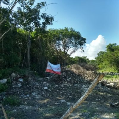 Clausura Profepa invasión en terrenos de Xpu Ha y en Xul-Ha