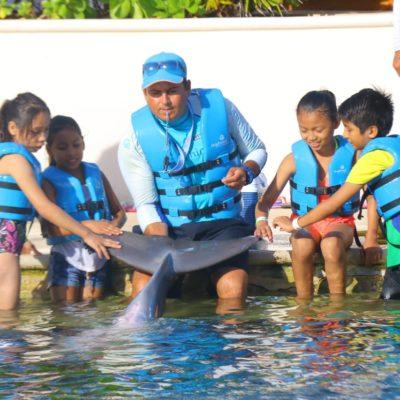 Acreditan a acuarios y delfinarios de Quintana Roo