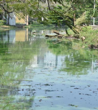 Reconocen exceso de restos fecales en 'Laguna de las Ilusiones' de Villahermosa, Tabasco; rescate costaría 90 mdp