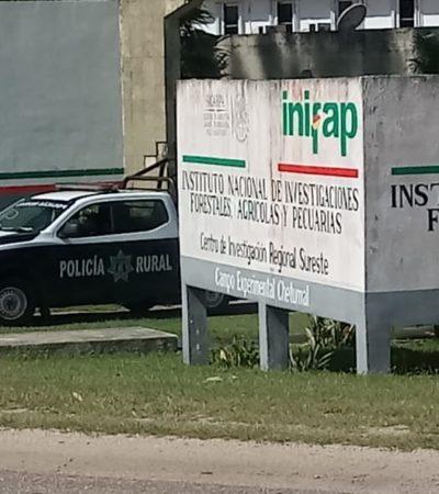 Reportan asalto al Inifap Chetumal