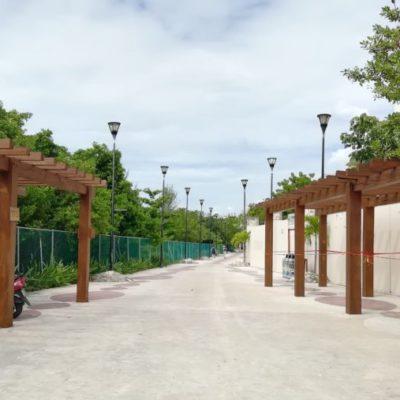 Polilla ataca estructuras de madera de la playa certificada 88 Norte por falta de mantenimiento
