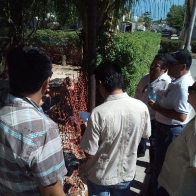 Alrededor de 212 áreas de donación del ayuntamiento de Solidaridad están invadidas por empresas, vecinos y asociaciones civiles