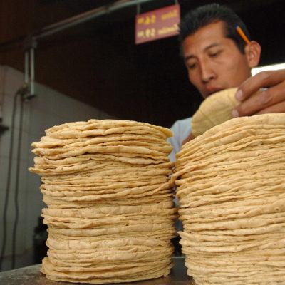 Inicia Cofece juicio contra monopolio de la tortilla en Palenque, Chiapas