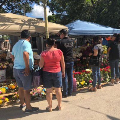 Dos negocios infraccionados por Profeco en celebración de Día de Muertos en Solidaridad