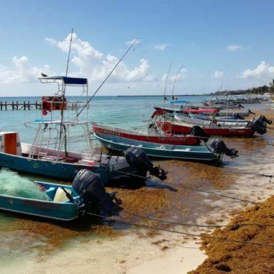 Erosión, sargazo y temporales, el mal de los últimos meses para pescadores de Playa del Carmen