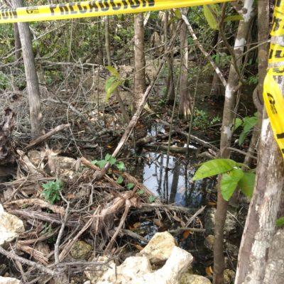 Autoridades suspenden la construcción de CADU por supuesto relleno de cenote; es la segunda constructora sancionada en las últimas semanas en Playa del Carmen