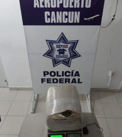 Interceptan seis kilos de marihuana en una empresa de mensajería en el aeropuerto de Cancún