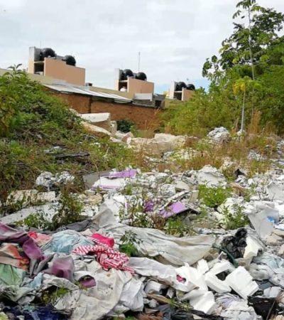 Habitantes de Palmas 2 en Playa del Carmen denuncian contaminación por basurero clandestino aledaño a zona habitacional