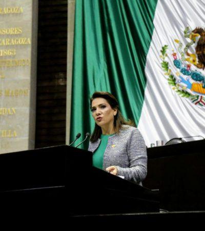 Para disminuir la inseguridad, es imperativo aumentar recursos el fortalecimiento de la paz, dice Adriana Teissier