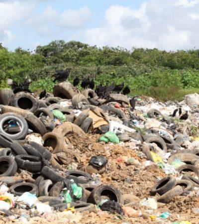Población de Carrillo Puerto está en riesgo ante tiraderos desmedidos de basura, advierten ambientalistas