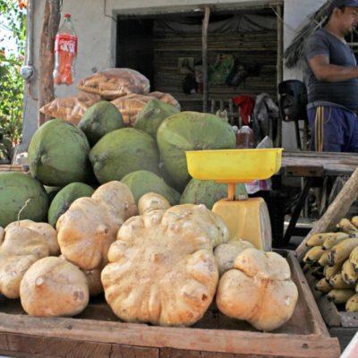 Persiste raquítica economía en la zona maya, por corrupción de gobiernos, según queja de pobladores