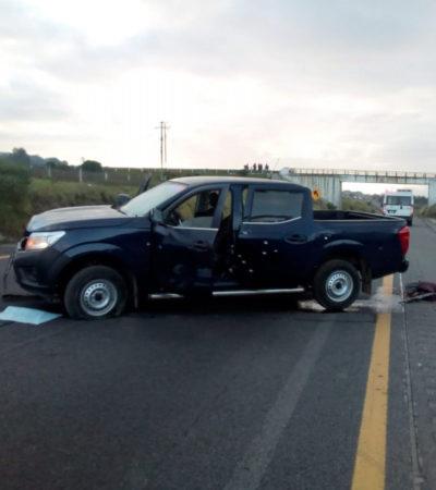 FOTOS | Hallan a cinco personas baleadas en la autopista Puebla-Orizaba (+18)