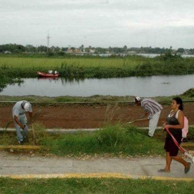 Estrangulan a joven mujer en Laguna Lagartos; suman en diciembre 20 asesinadas en Veracruz