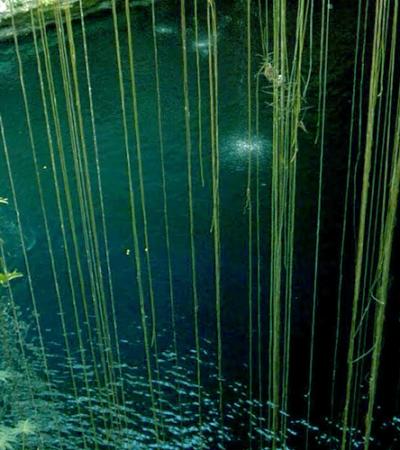 Descubren centro ceremonial prehispánico de más de 2 mil 300 años en Yucatán