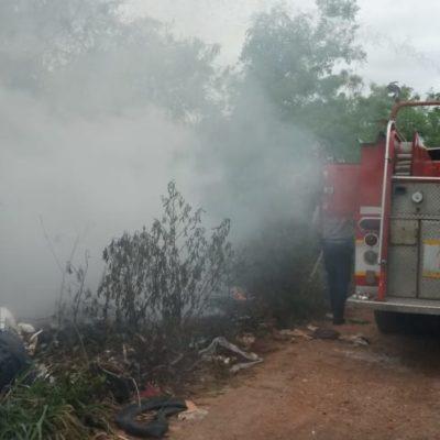 Se movilizan Bomberos de Chetumal por incendios en diferentes puntos de la ciudad